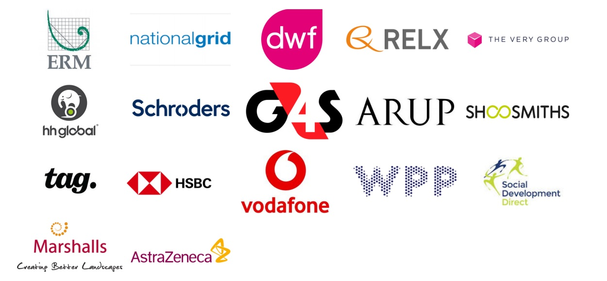 Participants: ERM, National Grid, The Very Group, DWF Group, RELX Group, HH Global, Schroders plc, G4S, Ove Arup & Partners, Tag Worldwide Group, Shoosmiths, HSBC Holdings, Vodafone Group, WPP, Social Development Direct, Marshalls, AstraZeneca