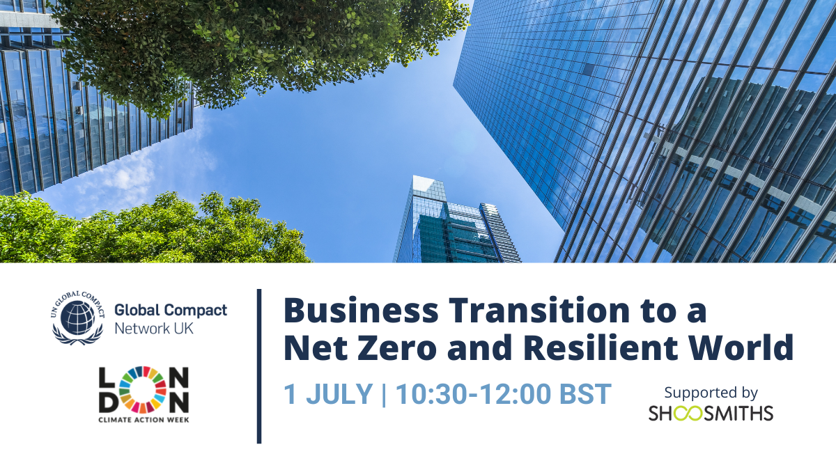 Business Transition to a Net Zero and Resilient World Social Media Version-1