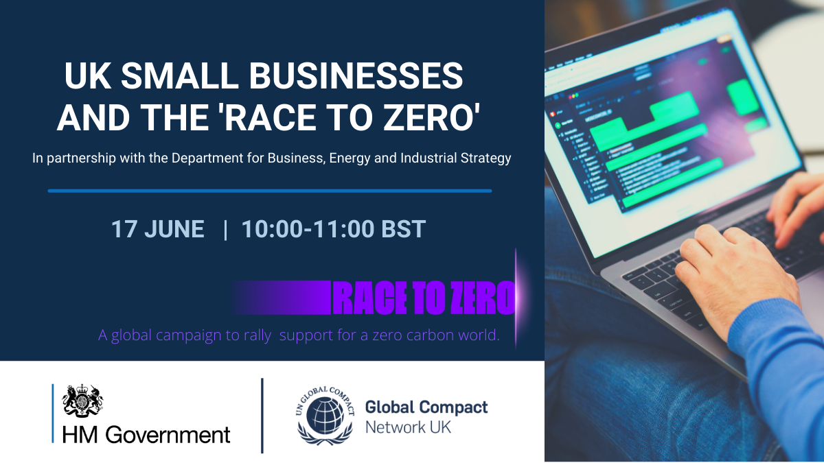 UK Small Businesses and the UN Race to Zero-4