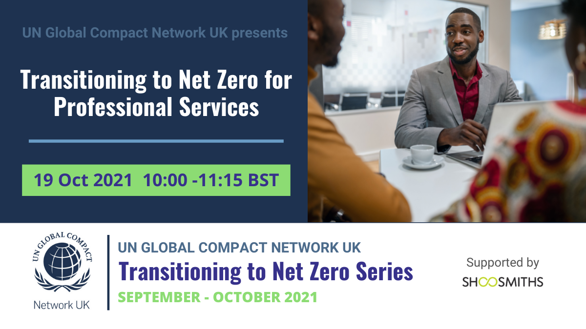 Transitioning to Net Zero - Professional Services
